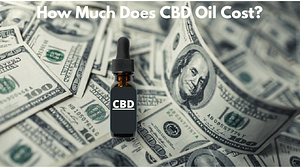 How much does CBD Oil cost?